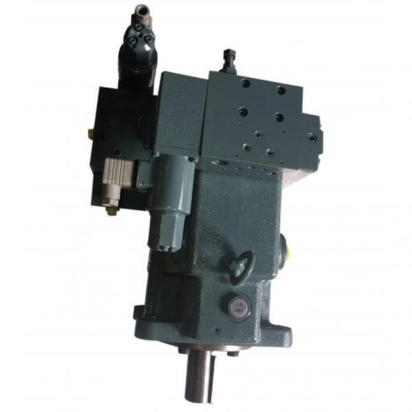 Yuken A45-F-R-04-H-K-10393         Piston pump #1 image