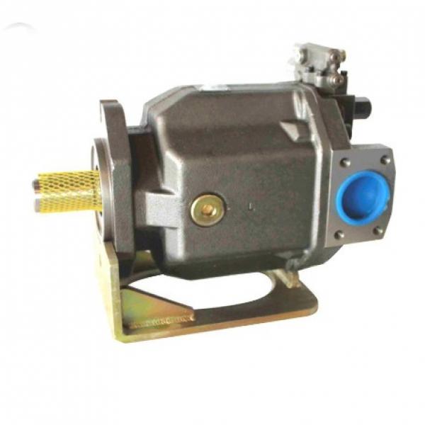 PAKER PV020R1K1T1NMMC Piston Pump #2 image
